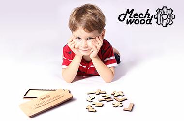 MechWood Логические игры из дерева